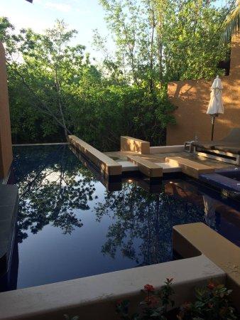 Banyan Tree Mayakoba: Private villa suite pool