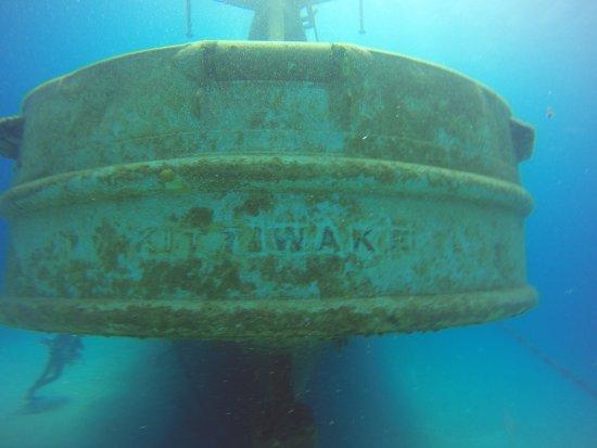 Kittiwake Shipwreck & Artificial Reef: view of the stern