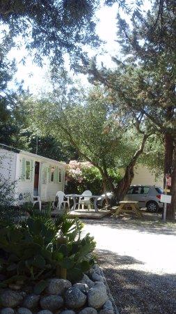 Le Boulou (El Voló), Francia: Un petit coin de paradis !