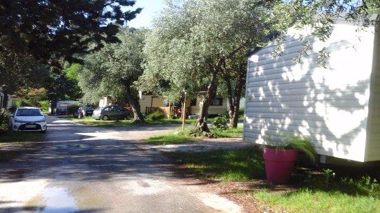 Le Boulou, Frankrijk: Le camping s'éveille sous le soleil !