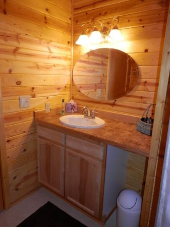 Lewis Charters Finger Lake View Lodge: Bathroom