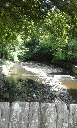 Bolton, UK: IMG-20160530-WA0005_large.jpg