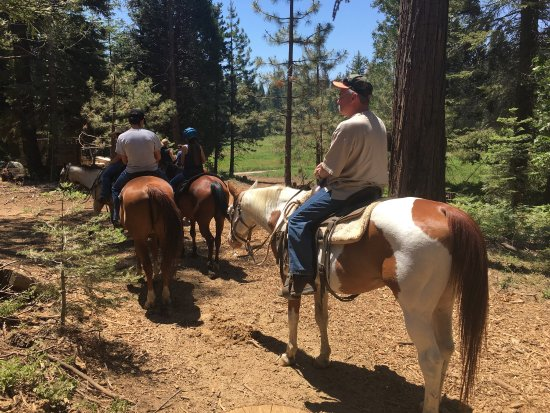 Shaver Stables: Great time