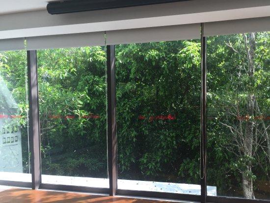 TAO Wellness Center: Inside yoga room, inspirational quotes on the windows