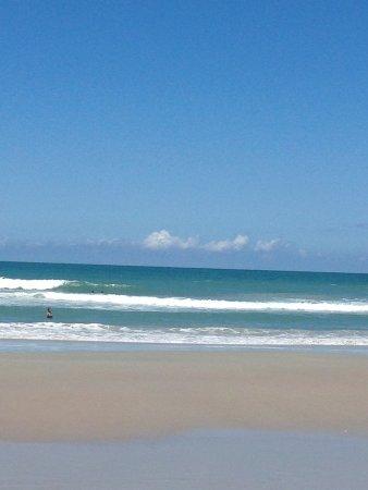 Canaveral National Seashore: Great beach 🌴😎🌴😎