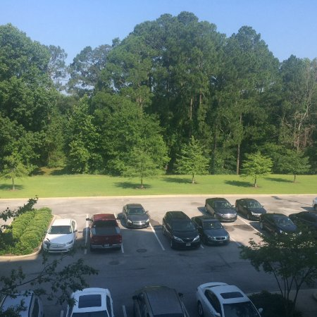 View from 3rd Floor Room - Facing The Back - Very Quiet - Picture of ...