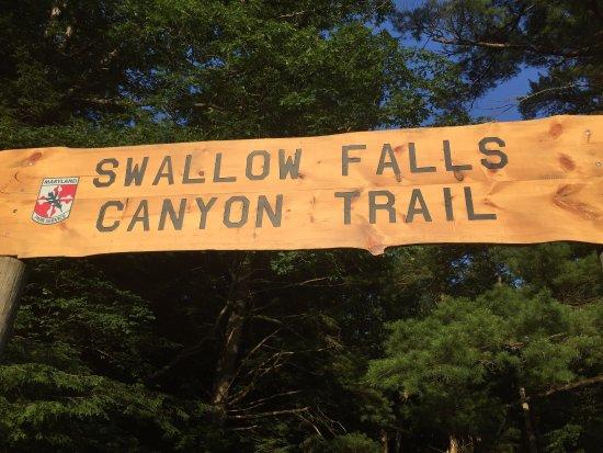 Swallow Falls State Park: photo0.jpg