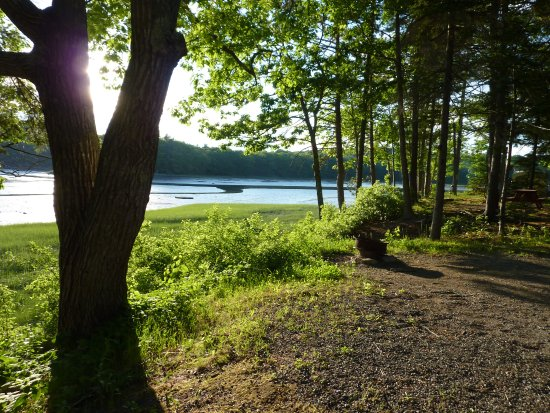 Shore Hills Campground: view from our campsite