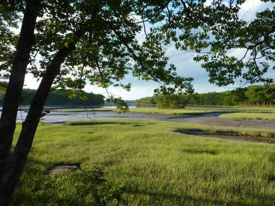 Shore Hills Campground: view from end of peninsula