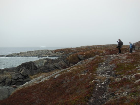 Quirpon Island, Kanada: Hiking into to the Inn - the 5.5 km route