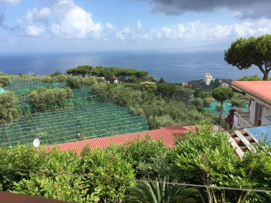 Il Nido Hotel Sorrento: the Bay with lemon groves below