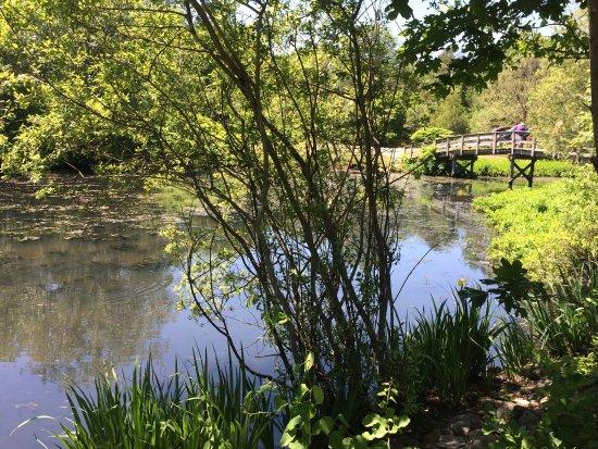 plymouth killarney springs family park