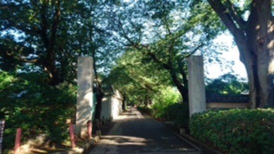 Hondo-ji Temple: 参道入り口