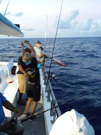 Bar jack fishing lantana fl omd men tripadvisor for Bar jack fishing