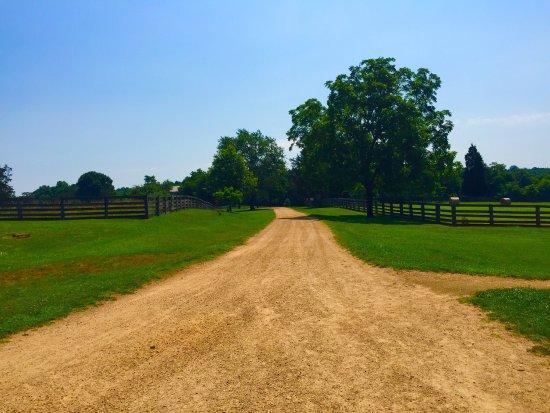 Appomattox, VA: photo3.jpg