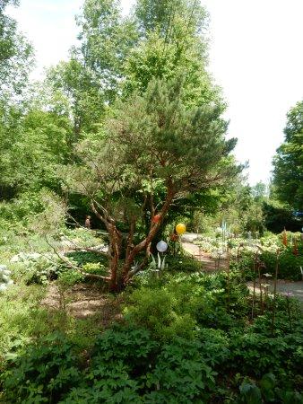 写真Kiwi Gardens枚