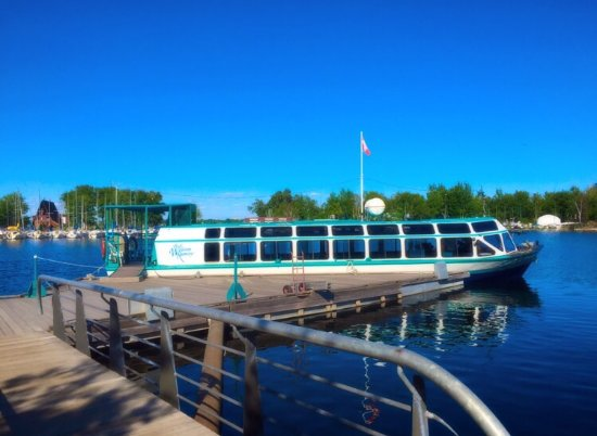 Cortina Cruise