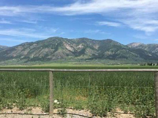 Thayne, Wyoming: Wolf Den Log Cabin Motel & RV Park