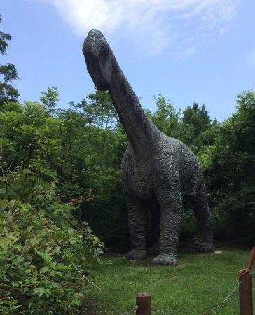 Henderson, Λουιζιάνα: Dino