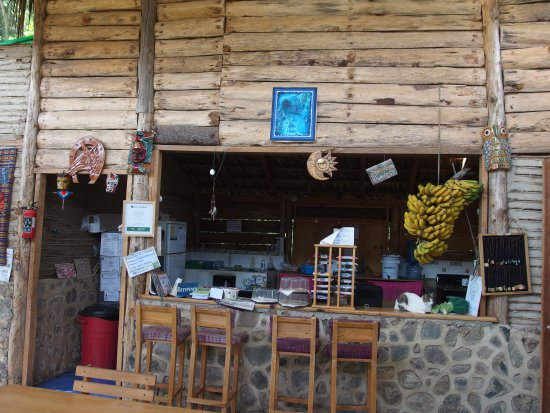 Eco Hotel MayAchik: view into our restaurant kitchen with bananas fresh from our garden