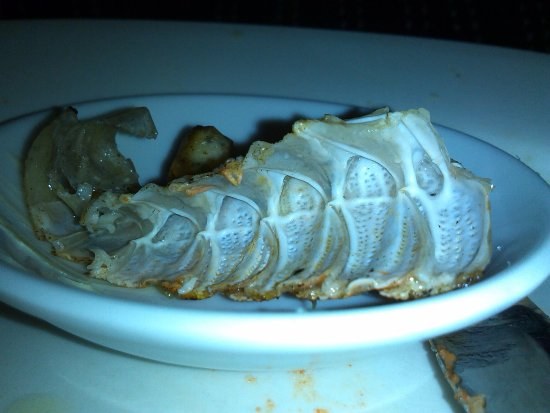 Middleton, Australia: All that was left of the slipper lobster!