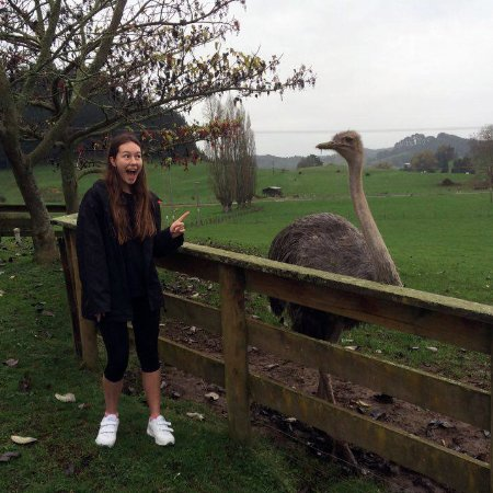Otorohanga, Nya Zeeland: Meeting a big bird