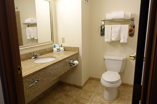Holiday Inn Express Hotel & Suites Dubuque-West: King suite bathroom