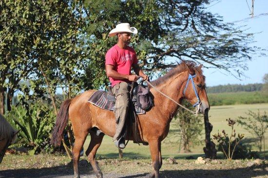 Campo Rico Trail Rides: HorseBack Riding