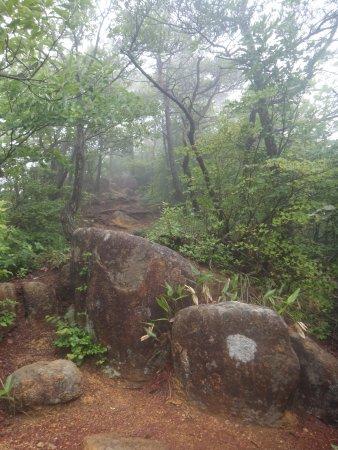 Mt. Ashitakeyama