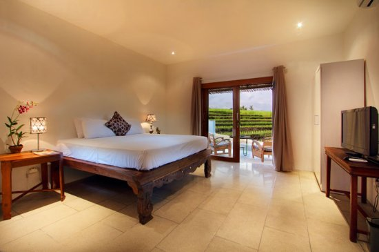 The Apartments Canggu: Deluxe Studio - guest room