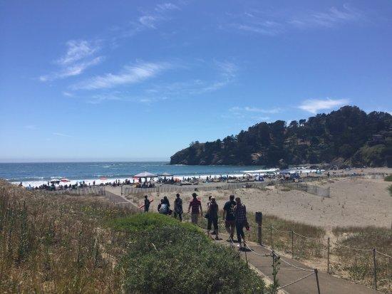 Muir Beach-billede