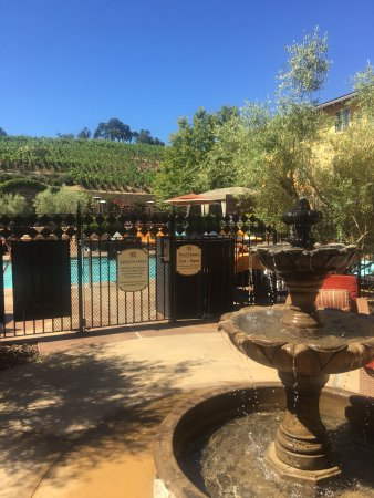 The Meritage Resort and Spa: Back patio vineyard and pool area