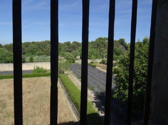 Hospital Grounds Gate Picture Of St Paul De Mausole SaintRemy