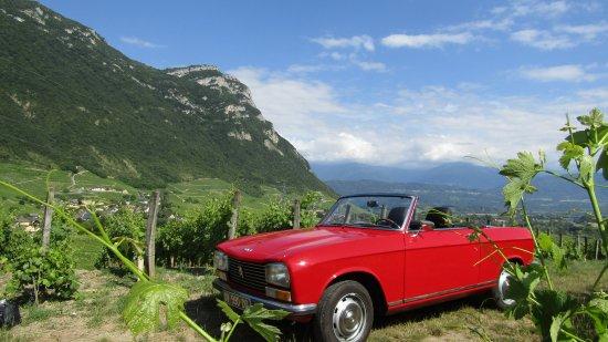 Chignin, França: Dans les vignes