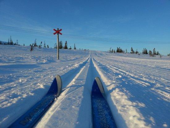 Undersaker, السويد: Cross country