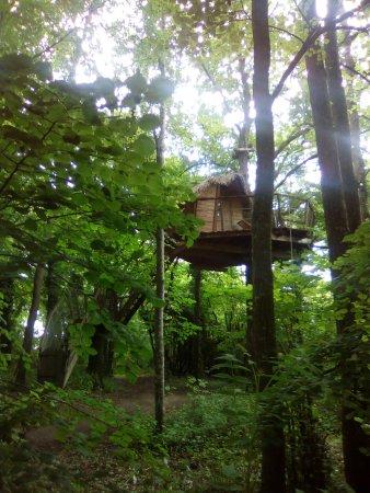 Ingrandes, Francia: Vue du bas de la cabane