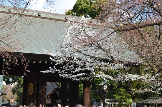 Yasukuni Shrine: 靖国神社の