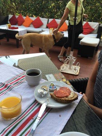 Hotel Los Globos: photo2.jpg