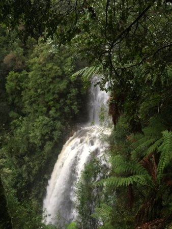 Waratah, Australia: Absolutely gorgeous falls ! I went in June '16 after some heavy rainfall & on a rainy / snowy da
