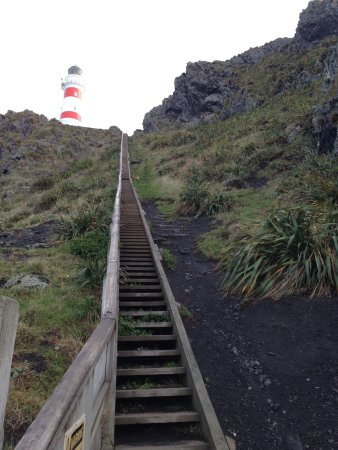 Wairarapa, Nueva Zelanda: Cape Palliser light house