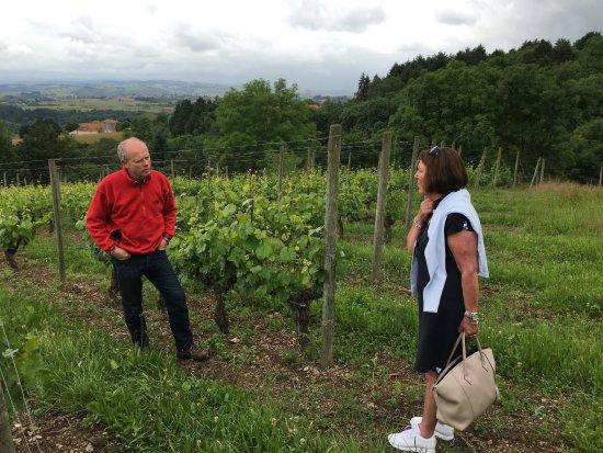 Rhone, Francja: en titt på vinrankene