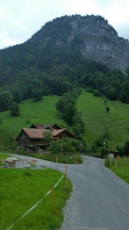 The Alpenhof: 20160624_200414_large.jpg