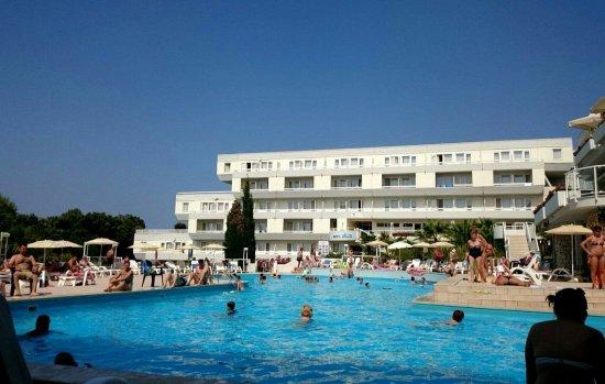 Hotel Delfin: received_1391234014236899_large.jpg