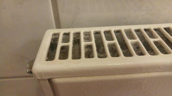 Novum Hotel Primus Frankfurt Sachsenhausen: В зазорах батареи полно пыли и паутины