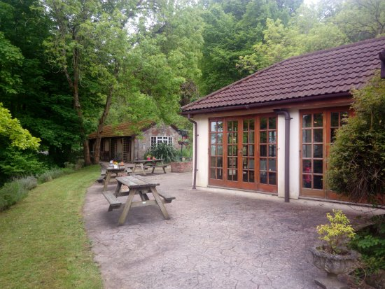 Churchill, UK: Dining room (foreground), moblity need chalet in back ground