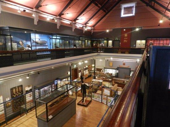 McLean Museum: 1st floor gallery looking towards art gallery entrance on ground floor