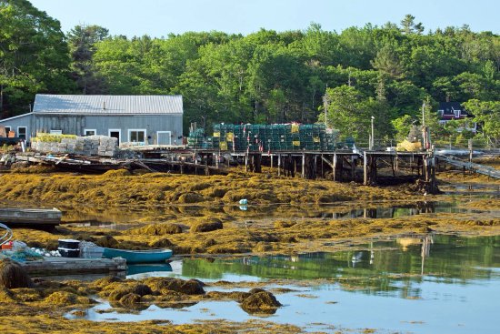 East Boothbay, เมน: Some of the scenery in and around the immediate vicinity of the Five Gables Inn.