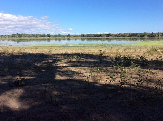 Chiredzi, Zimbabwe: Pan in Gonerezhou