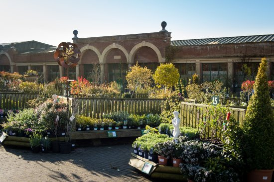 Oakham, UK: Gates Garden Centre