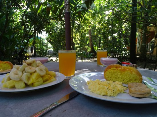 Playa Matapalo, Costa Rica : Perfect breakfast